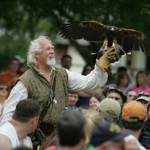falconer at scarborough renaissance festival